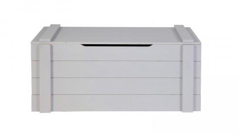 Coffre de rangement en pin massif béton gris - Collection Dennis - Woood